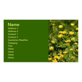NATUREN Small-yellow-flowers-in-grass1957 BLOMMAR Visitkort