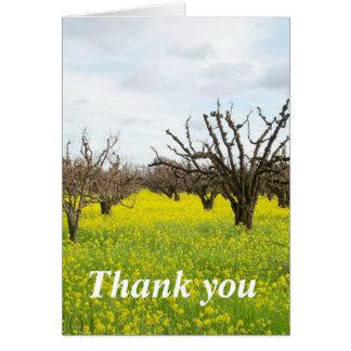 Naturen tackar dig att card kort