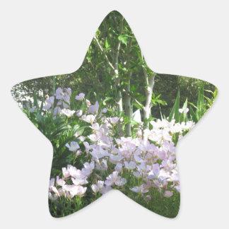 Naturfotoet blommar NewJersey Amerika NVN665 Stjärnformat Klistermärke