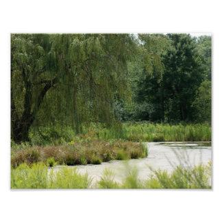 Naturland 11 x fotografiskt tryck 8 5