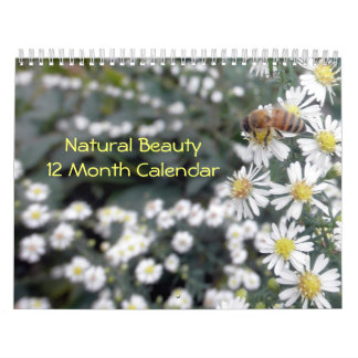 Naturlig skönhetfotografi kalender för 12 månad