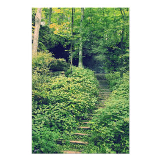 Naturlig trappuppgång foto
