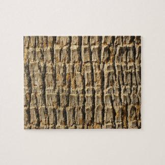 Naturligt kallt Surfaces_Palm trädskäll Pussel