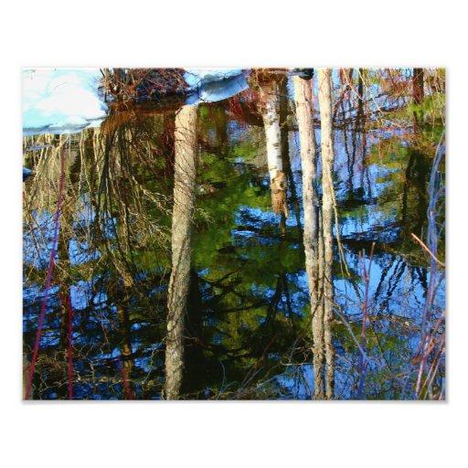 Naturs gåva - reflexioner fototryck