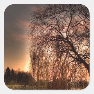 Naturskymning efter glödande reflexion fyrkantigt klistermärke