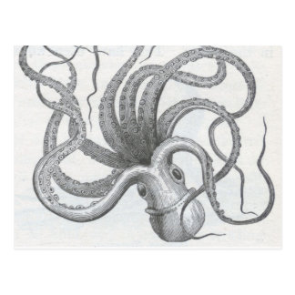 Nautisk steampunkbläckfiskvintage kraken design vykort