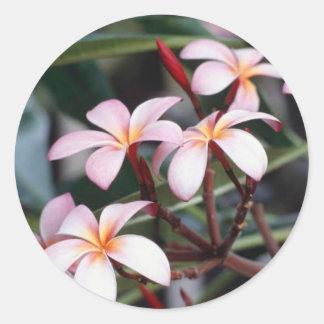 Nautral blommor runt klistermärke