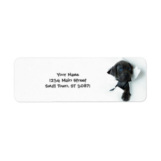 Neapolitan Mastiffsvarthund som igenom river Returadress Etikett