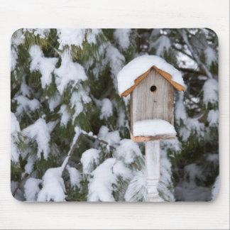 Near grästräd för Birdhouse i vinter Mus Matta