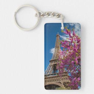 Nedanfört rosa blomstra träd det Eiffel torn