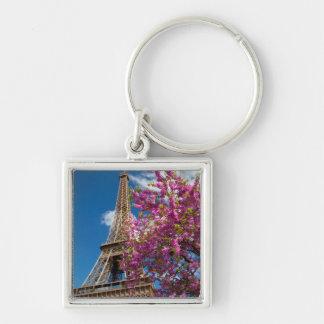 Nedanfört rosa blomstra träd det Eiffel torn Fyrkantig Silverfärgad Nyckelring