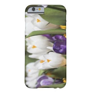 Nederländerna Keukenhoff trädgårdar, Tulips. Barely There iPhone 6 Skal