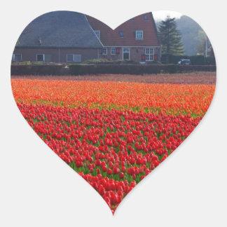 Nederländerna: Tulpanfält i Holland Hjärtformat Klistermärke