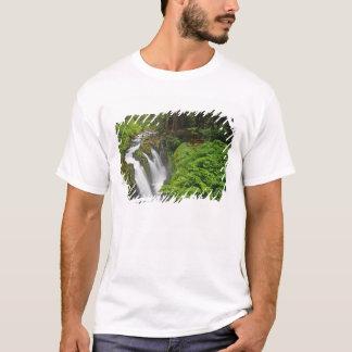 Nedgångar för solenoid Duc i olympisk nationalpark Tee Shirt