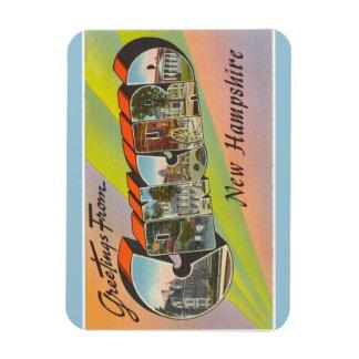 New Hampshire harmonimagnet Magnet