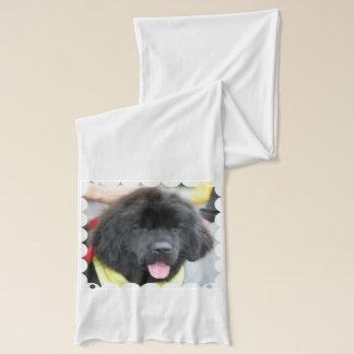 Newfoundland hund sjal