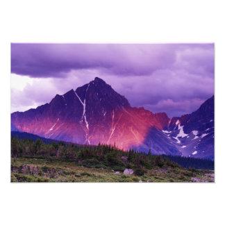 Nordamerika Kanada, Alberta, kanadensare Fototryck
