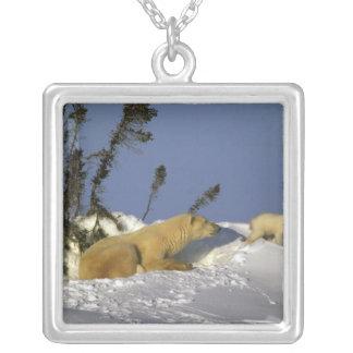 Nordamerika Kanada, Manitoba, Churchill. 5 Silverpläterat Halsband