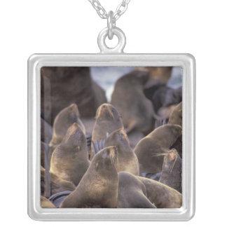 Nordamerika USA, Alaska. Utsatt för fara Halsband Med Fyrkantigt Hängsmycke