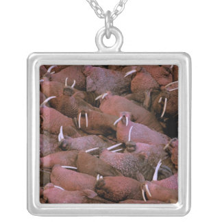 Nordamerika USA, Alaska, Yukon deltamedborgare Silverpläterat Halsband