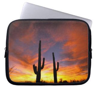 Nordamerika USA, Arizona, Sonoran Desert. Laptop Sleeve