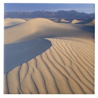 Nordamerika USA, Califorinia, Death Valley 3 Kakelplatta
