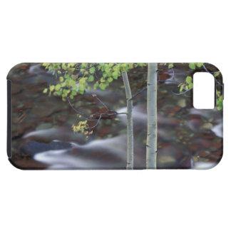 Nordamerika USA, Colorado, San Juan iPhone 5 Case-Mate Skal