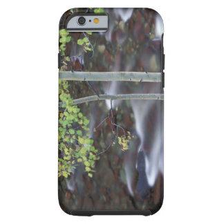 Nordamerika USA, Colorado, San Juan Tough iPhone 6 Fodral