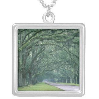 Nordamerika USA, Georgia, Savannah, Silverpläterat Halsband