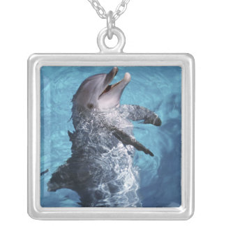 Nordamerika USA, Hawaii. Delfin 2 Silverpläterat Halsband