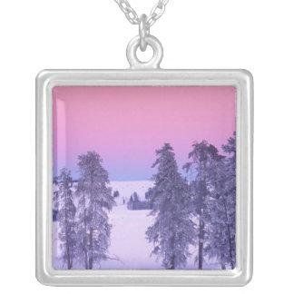 Nordamerika USA, Montana, Yellowstone Silverpläterat Halsband
