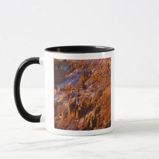 Nordamerika USA, Utah, Bryce kanjon Mugg