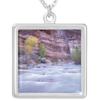 Nordamerika USA, Utah, Zion nationalpark. 2 Halsband Med Fyrkantigt Hängsmycke