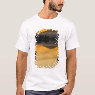 Nordamerika USA, WA, olympisk medborgarePark. Tee Shirts