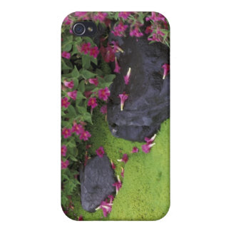 Nordamerika USA, Washington, Mount Rainier iPhone 4 Cases