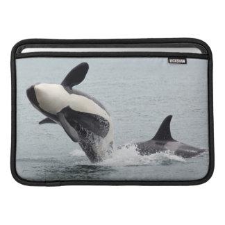 Nordamerika USA, Washington, San Juan MacBook Sleeve