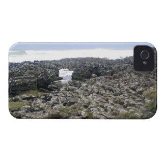 Nordlig jätteCauseway - ireland iPhone 4 Skal
