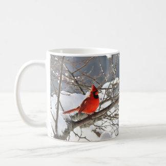 Nordlig kardinal i snön kaffemugg