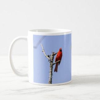Nordlig kardinal kaffemugg