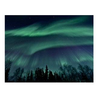 Nordligt ljus av Alaska Vykort