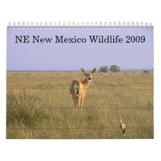 Nordöstra nytt - mexico djurliv 2009 kalender