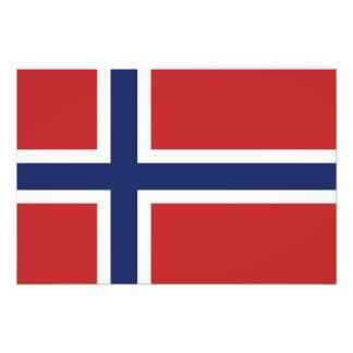 Norgeflagga Konstfoto