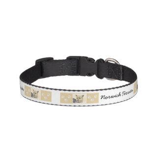 Norwich Terrier Halsband Husdjur