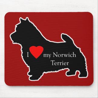 Norwich Terrier Musmatta
