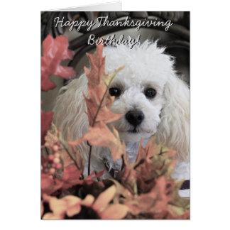 Notecard för hund för thanksgivingfödelsedagpudel OBS kort