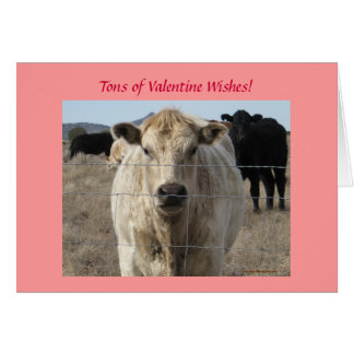 Nötkreatur samlas westernt valentinönskemål - hälsningskort