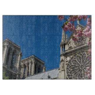 Notre Dame i Paris, frankrike med vår blommor
