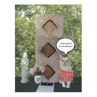 Ny adress Townhouse för rolig kvinnlig katt Vykort
