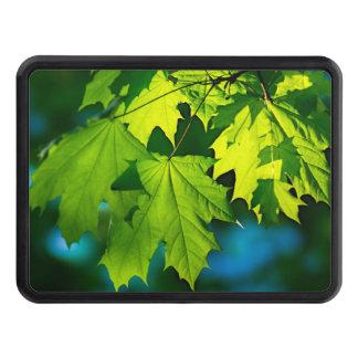 Nya gröna lönnlöv skydd för dragkrok
