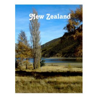 Nyazeeländsk bygd vykort